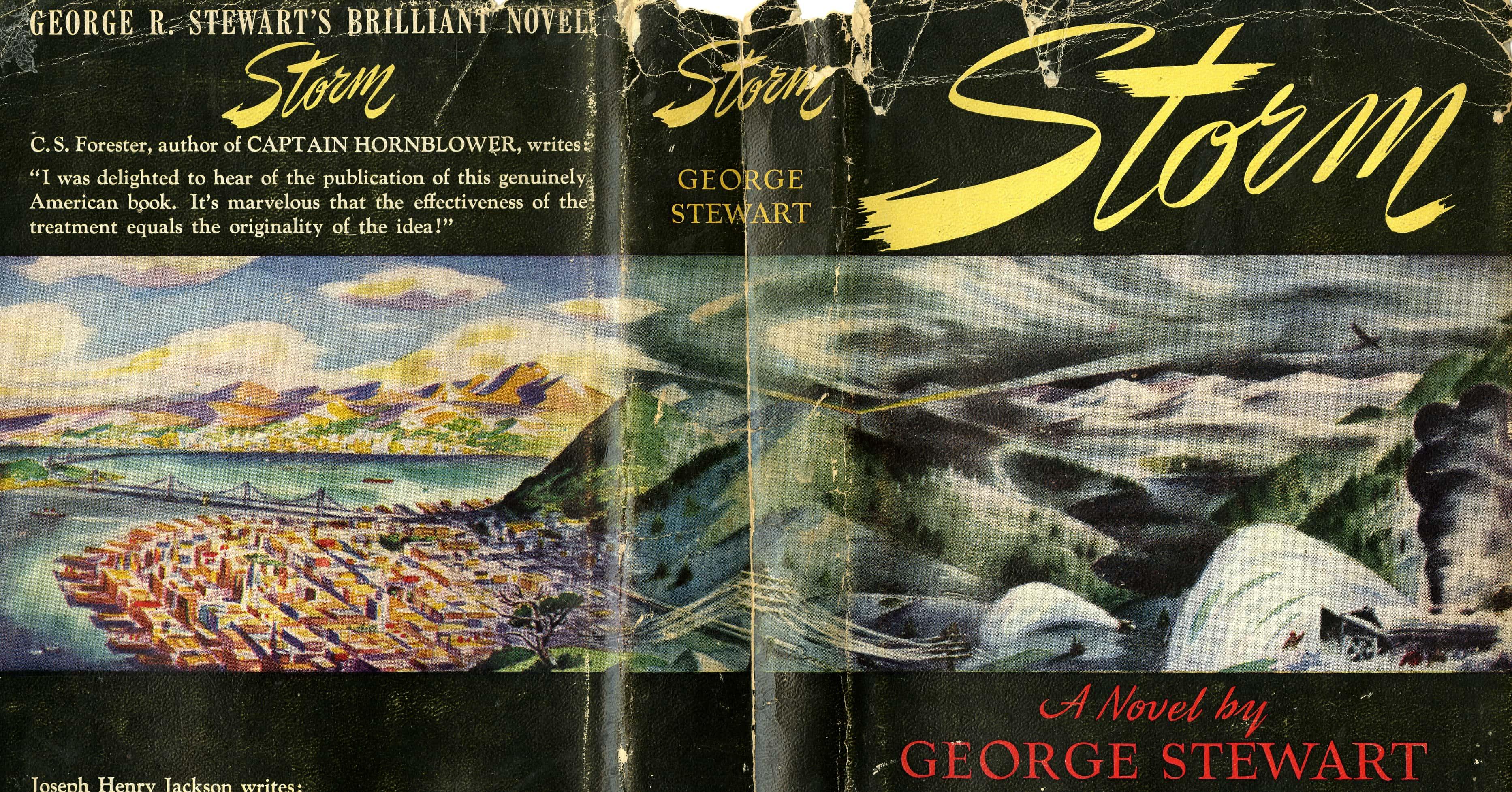 Storm-novel-cover
